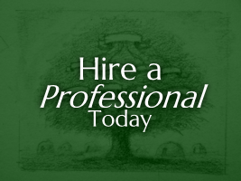 Hire a Professional Today